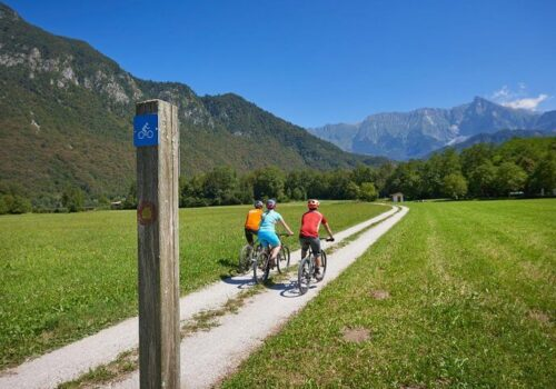 day cycling tour-OP